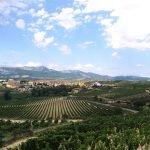 rioja wine tasting tours